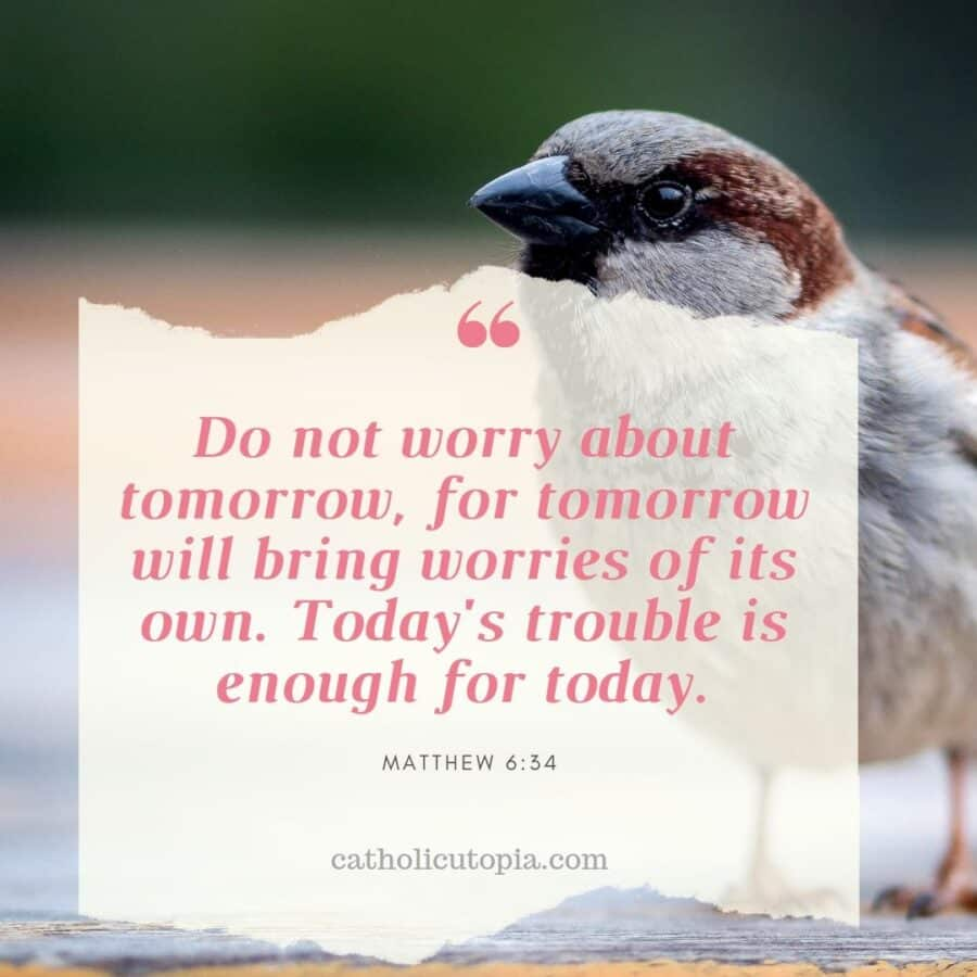 Do not worry about tomorrow for tomorrow will bring worries of its own. Todays trouble is enough for today 900x900 - Gallery